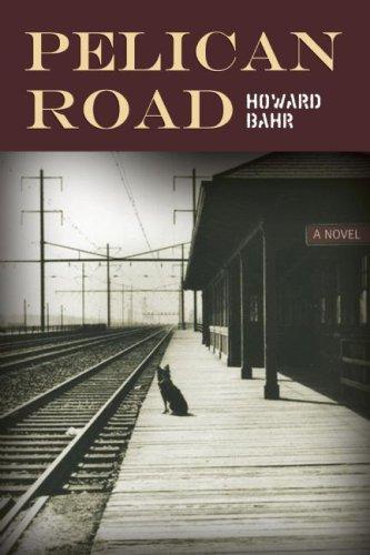 Download Pelican Road