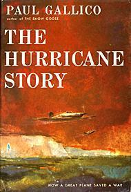 Download The Hurricane Story