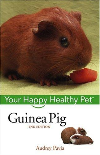 Download Guinea Pig