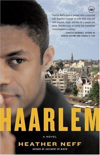 Download Haarlem