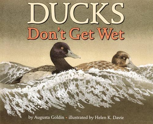 Download Ducks don't get wet