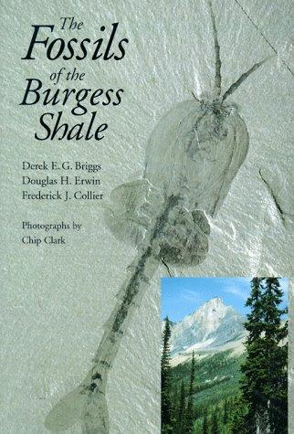 Fossils of the Burgess Shale by BRIGGS D