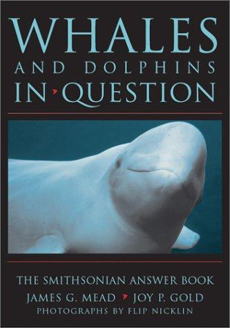 WHALES & DOLPHINS IN QUESTION