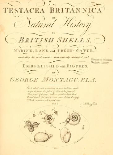 Testacea Britannica, or, Natural history of British shells, marine, land, and fresh-water, including the most minute by George Montagu