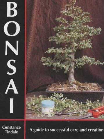 Bonsai by Constance Tindale
