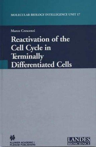 Reactivation of the Cell Cycle in Terminally Differentiated Cells (Molecular Biology Intelligence Unit, 17) by Marco Crescenzi